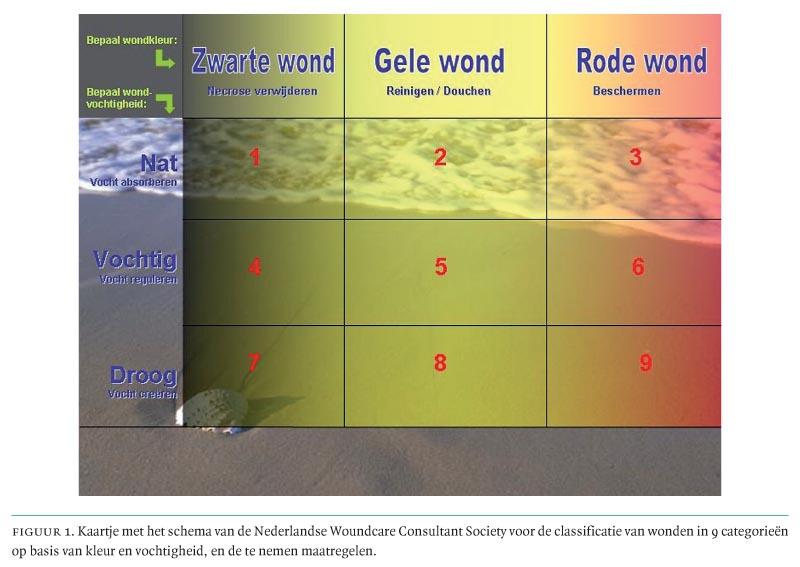 Lokale Wondzorg Evidence Based Behandelingen En Verbandmaterialen